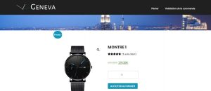 exemple site mono produit